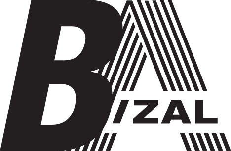 BizAl – Consulting & Advisory Services